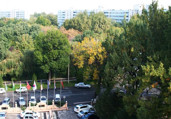 осень в Ташкенте
